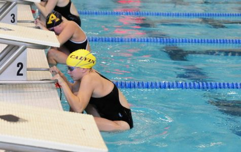 Swim loses to D-II Wayne State