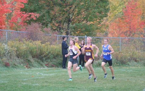 Men's cross country takes regional championship, women take third