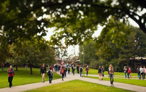 Calvin College becomes third college in Michigan to be named tree-friendly