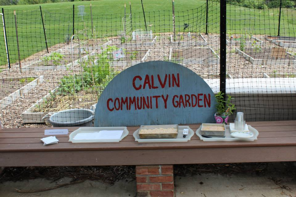 Calvin community garden likely to expand