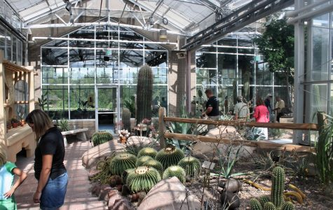 Frederik Meijer Gardens launched annual 'Butterflies are Blooming' exhibition