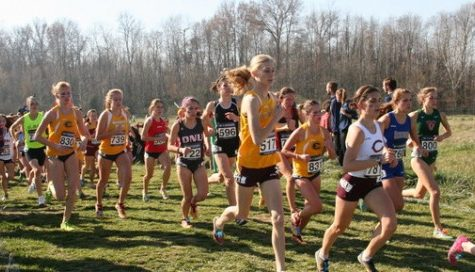 Michmerhuizen earns pair of All-American Honors