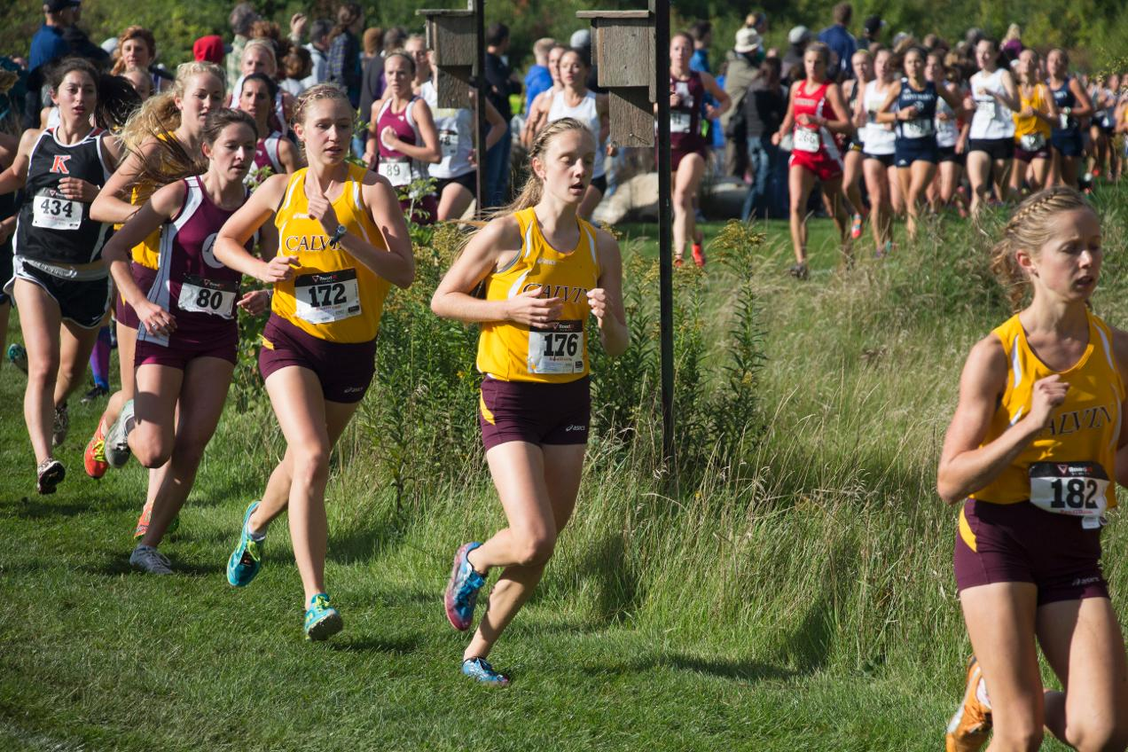 calvin college cross country