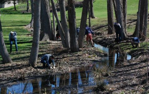 Restoration efforts by Plaster Creek Stewards recognized on global scale