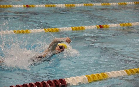 Calvin swimming and diving teams ranked in top 25