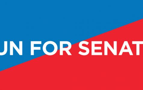 Campaign week sets stage for student senate elections