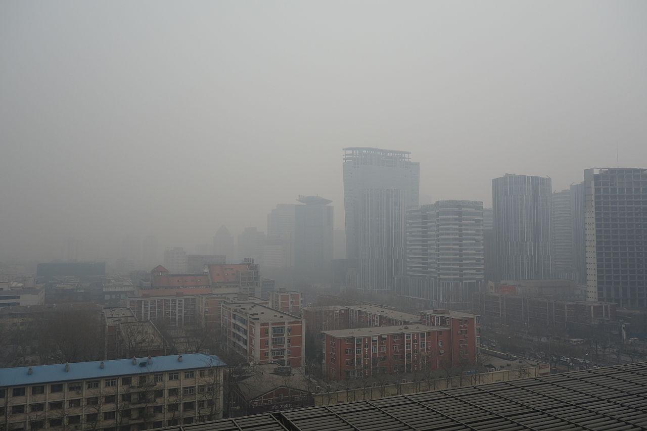Photo by Wikimedia Commons user Kentaro IEMOTO (CC SA 2.0). (Location: Beijing)