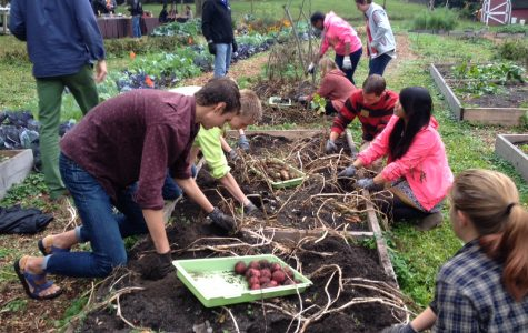 Farm and Feast teaches Upperclass Taskforce about sustainable food