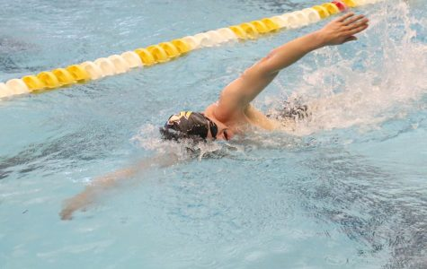 Men's swimming wins four relays