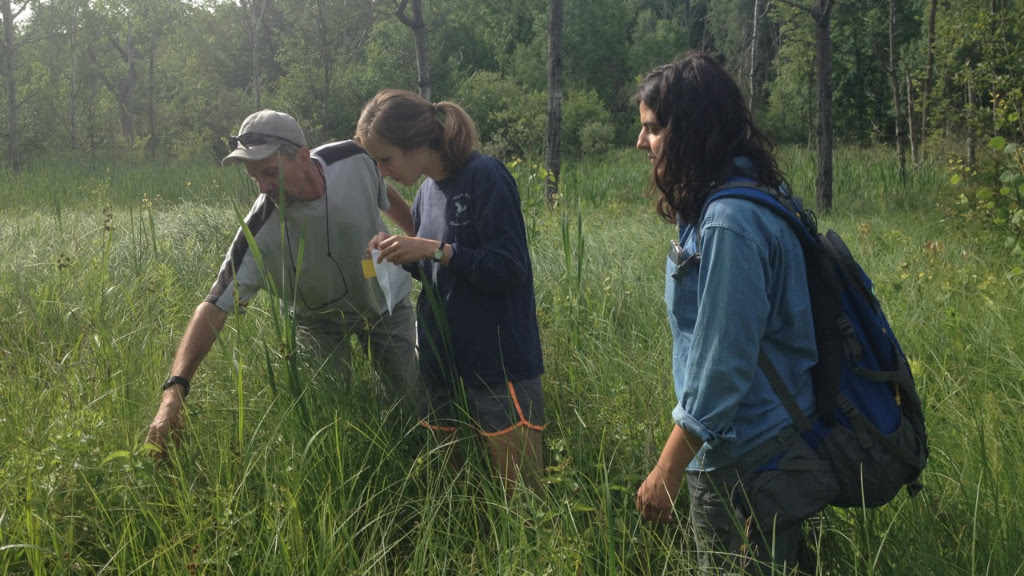 Students join faculty in on-campus summer research