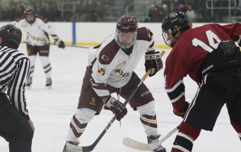 Hockey teams find mixed success in new divisions