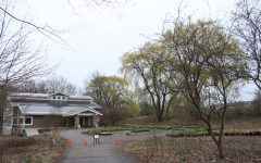 Ecosystem preserve to see improvements over summer