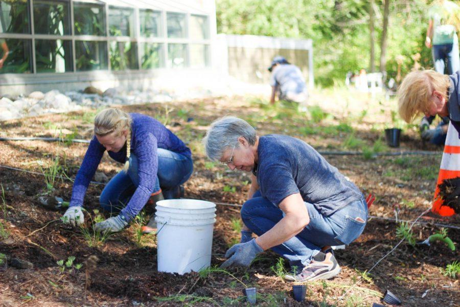 Planting events at nature preserve prep for springtime bloom