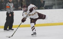 DIII hockey team finds immediate success