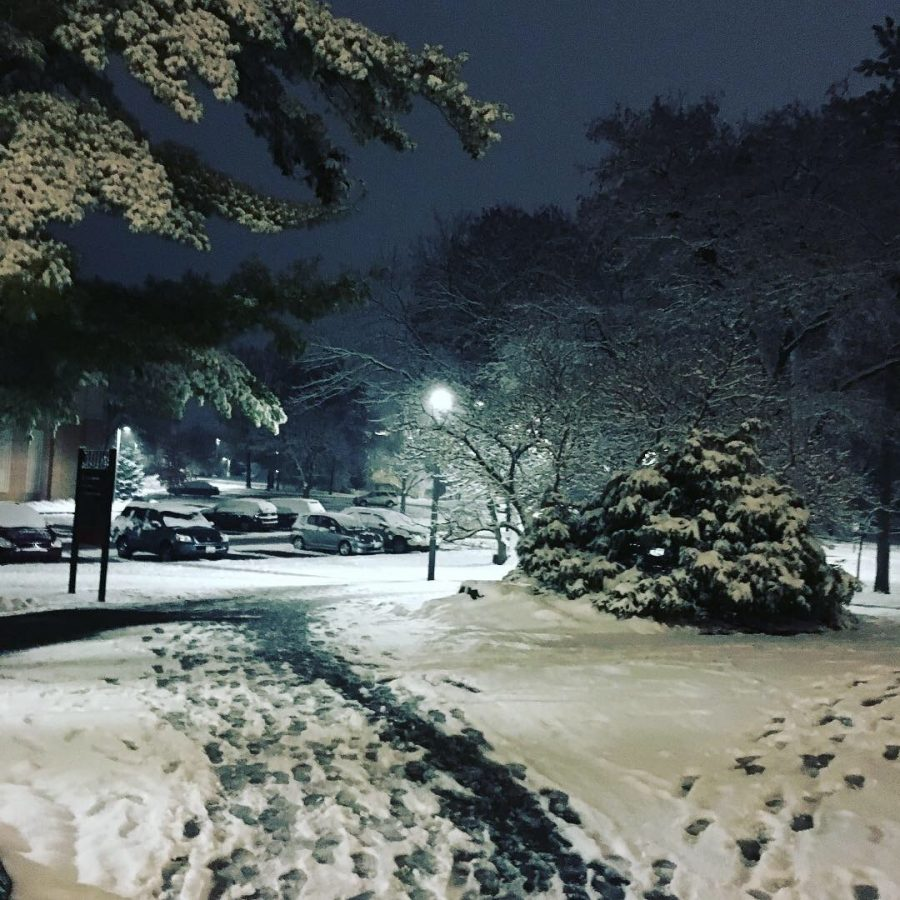 Snow outside of the library.