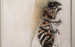 New art exhibit explores the loss of bees