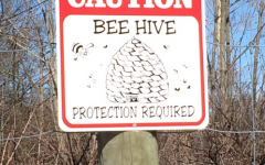 Calvin's beehives are entirely wiped out, but beekeeping will continue