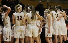 Calvin alum named women's basketball head coach