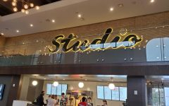 Studio Park, Celebration Cinema to renew downtown Grand Rapids