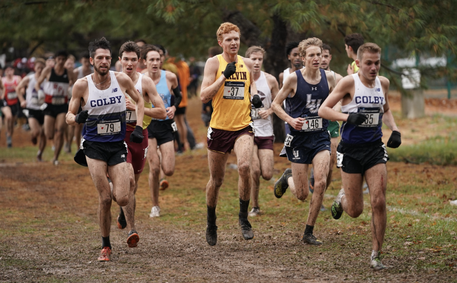 Pictured, Tyler Johnson running the 8k at NCAA DIII Cross Country Championships