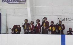 D1 Hockey Team Success