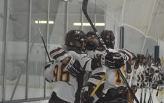 D1 hockey team headed to nationals