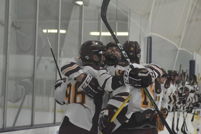 Knights celebrating a goal at a home game