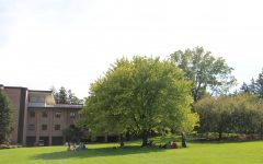Princeton Review recognizes Calvin as green campus