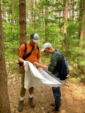 Summer research makes Calvin academics tick