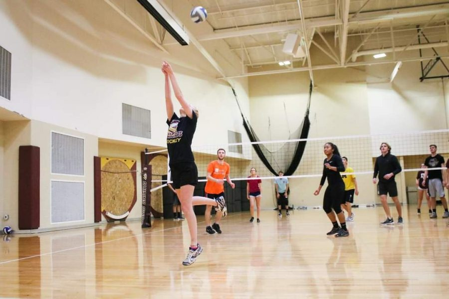 Calvin students will be back to playing intramurals like volleyball this fall after last years break.